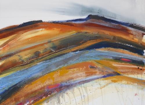 Windswept, Honey Bag Tor, Dartmoor.