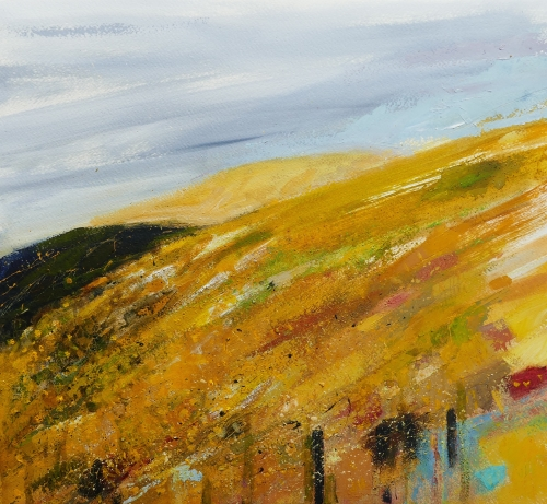 Swaling, Dartmoor