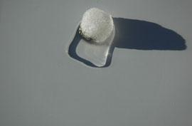 snowball5
